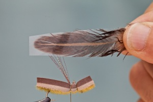 single feather foam hopper wing