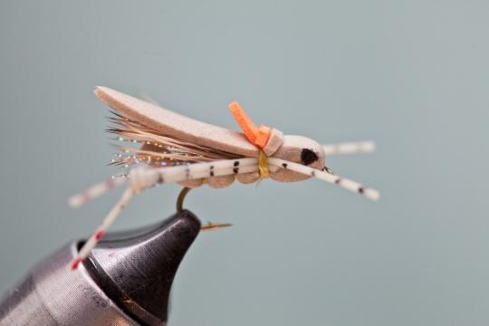 finished fish magnet hopper