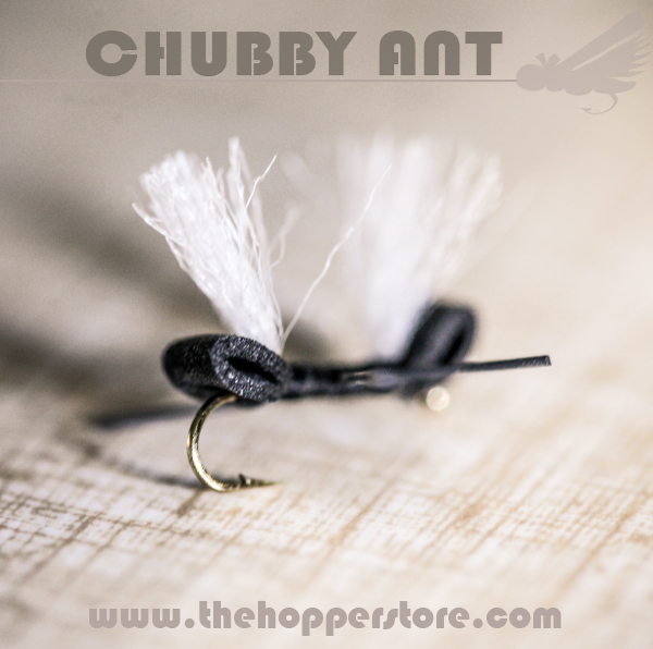 How to tie a chubby ant