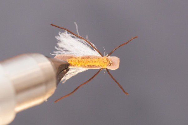 trout view of finished mini chubby foam fly